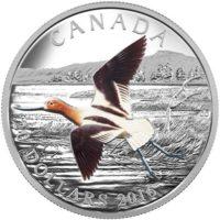 150993-piece-argent-avocette-amerique